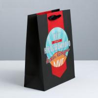 Подарочный пакет  Мистер совершенство  - 23 х 18 см.